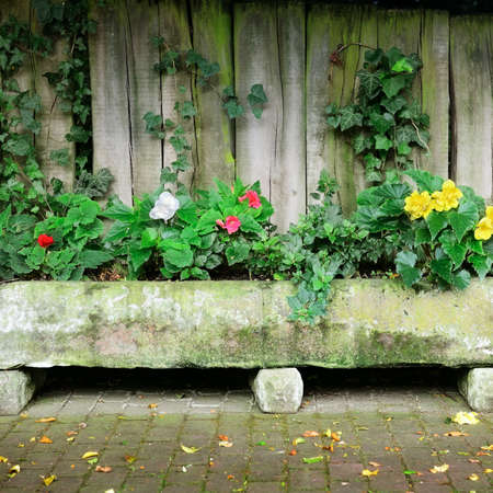 Flower bed near board fence                                     photo