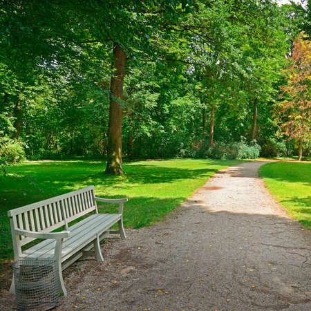 Bench in a beautiful park.                                   photo