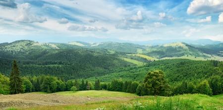 美しい山々 に木覆われています。