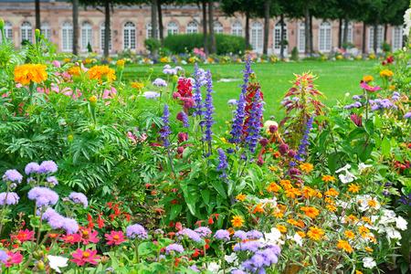 Bloeiende bloemperken in het park