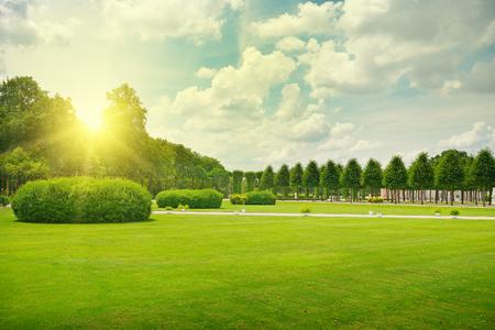 Sonnenaufgang im schönen Park Standard-Bild - 33019494