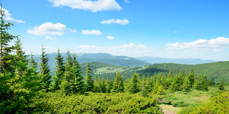 mountains covered trees and blue sky Stock Photo