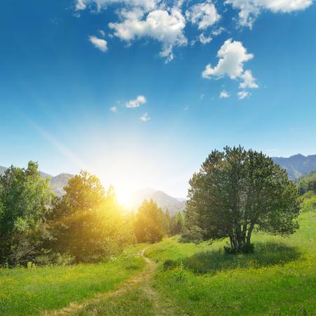 山の中の美しい日の出