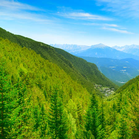 Picturesque mountains covered with forests