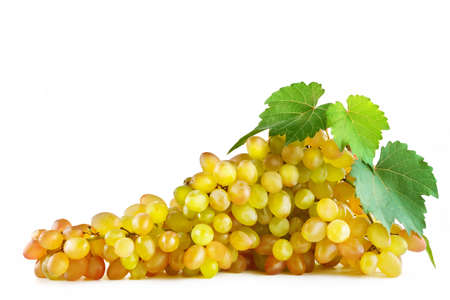 Bunch fresh grapes isolated on white background. Clipping path. Free space for text.