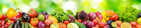 Panorama of fresh vegetables and fruits on natural blurred background of green leaves. Banco de Imagens