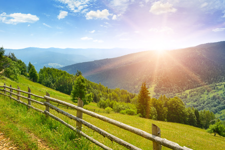 Bright dawn in mountains. View of picturesque meadow in Carpathians.