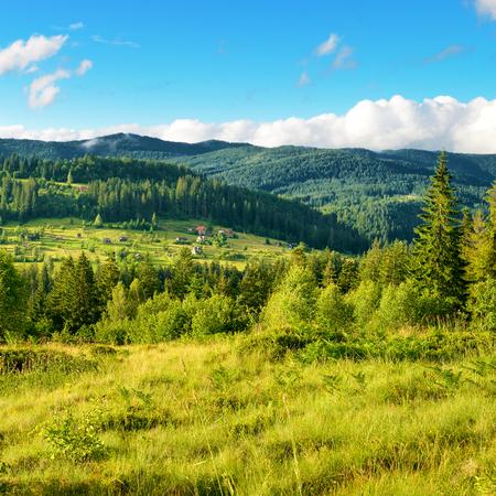 View Carpathian Mountains at sunset. Ukraine.
