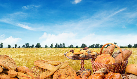 Freshly baked breads on  wheat field. Free space for text.