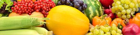 Bright  fresh ripe vegetables and fruits. Zdjęcie Seryjne