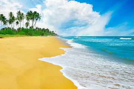 Tropical seascape with blue sky and yellow sand. Zdjęcie Seryjne