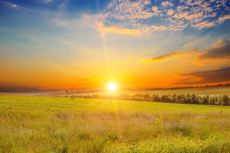 Wide landscape of green field and epic sunset