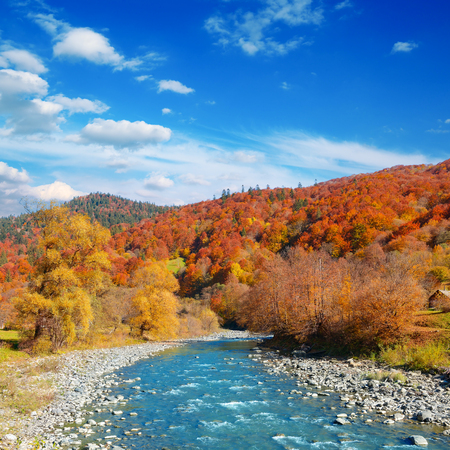 Bright autumn landscape valley mountain river.