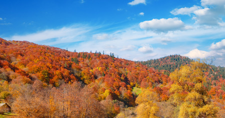 Panoramic autumn landscape valley mountain river.