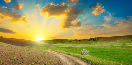 Dirt road on panoramic agricultural landscape with bright sunset and blue sky.