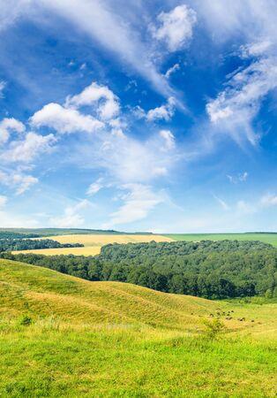 Magnificent pasture landscape and bright blue sky