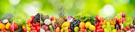 Fruits, vegetables separated vertical lines on green natural background.