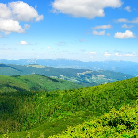 Carpathian mountains on bright sunny day aerial view.
