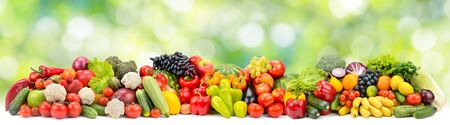 Panoramic photo multi-colored fruits and vegetables on green blurred background