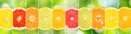 Halves bright citrus fruits separated by vertical lines on green blurred background.