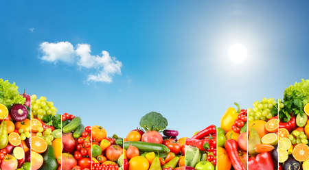 Panoramic photo of different fruits and vegetables on background of blue sky with bright sun.