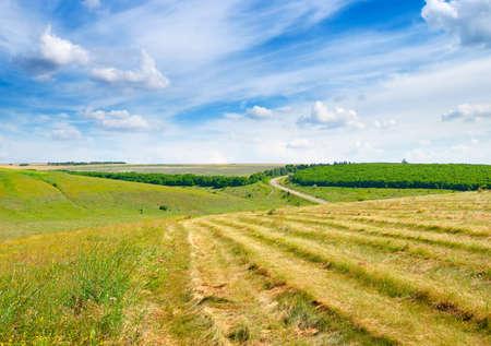 Scenic landscape of large farm field. Foto de archivo
