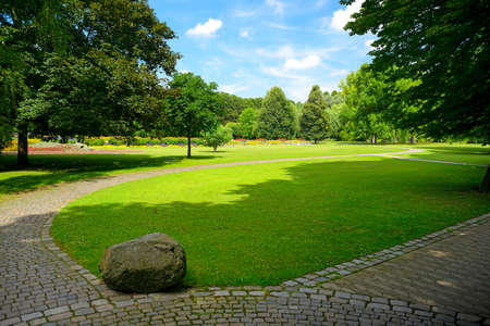 Lovely meadow with green grass and walking paths in public park.