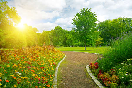Sunrise over beautiful meadow with flowers and path in the city public park. 版權商用圖片