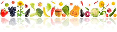 Vegetables and fruits in one line with reflection isolated on white background.