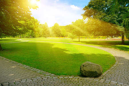 Bright sunbeams over beautiful meadow with green grass and walking paths in public park. Stock Photo