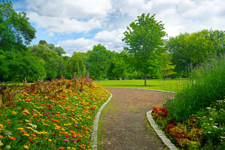 Beautiful meadow with flowers and path in city public park.