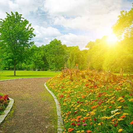 Sunrise over beautiful meadow with flowers and path in the public park. 版權商用圖片