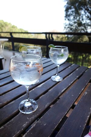taking gin tonics with friends in a country house