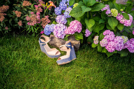 Italian shoes, elegant sandals in the garden photo