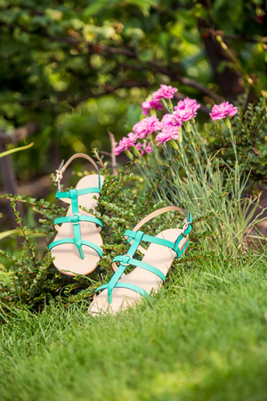 overpowering: two pairs of green and red shoes and bag lay on the grass Stock Photo