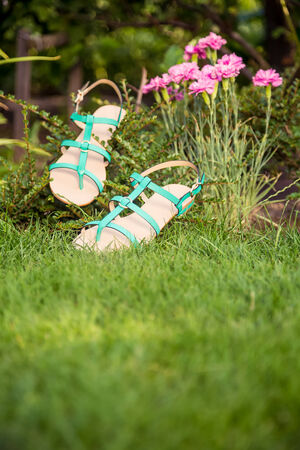 overpowering: sandals hanging on a bush, womens shoes