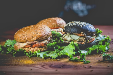 Triad burgers and fresh herbs, delicious food