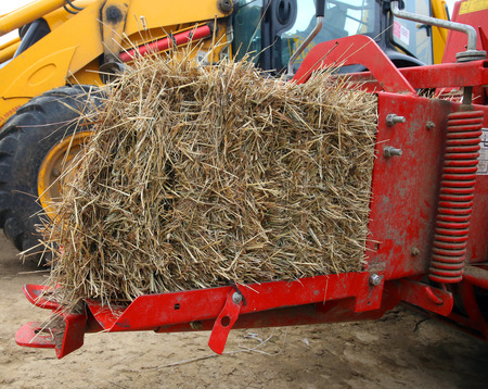 baler: Bale of fresh hay coming out a red hay baler