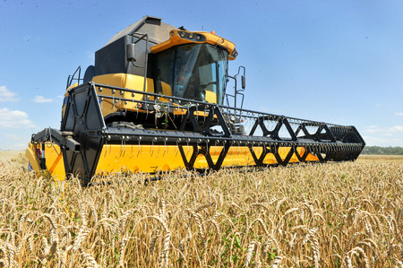 CHUGUEV, KHARKIV OBLAST, UKRAINE - JULY 24, 2015: Combine harvests wheat on a field in sunny summer day, 24 July 2015, Kharkiv Oblast, Ukraine. Editorial