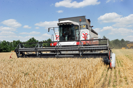 CHUGUEV, KHARKIV OBLAST, UKRAINE - JULY 24, 2015: Combine harvests wheat on a field in sunny summer day, 24 July 2015, Kharkiv Oblast, Ukraine. Editorial