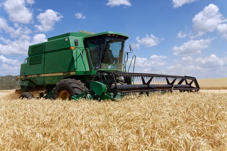cosechadora: Kharkiv Region, Ukraine - July 11, 2017: Combine harvest wheat on a field in sunny summer day in Kharkiv Region, Ukraine on July 11, 2017.