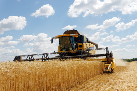 Kharkiv Region, Ukraine - July 11, 2017: Combine harvest wheat on a field in sunny summer day in Kharkiv Region, Ukraine on July 11, 2017.
