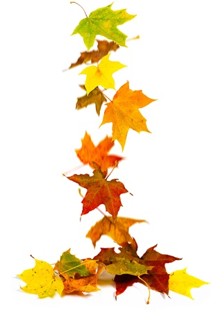 Falling colorful autumn maple leaves background. Stock Photo - 10672262