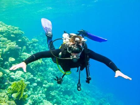 picada: Scuba Diver bajo el agua en el mar rojo. Foto de archivo