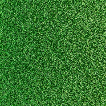 緑の草のバック グラウンド テクスチャです。