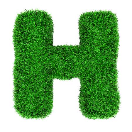 Lettera H, fatta di erba isolato su sfondo bianco. Archivio Fotografico - 12346508