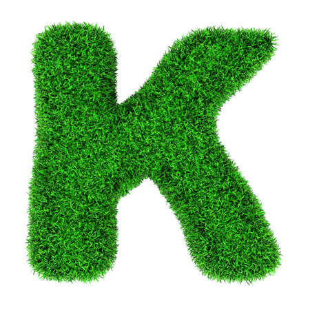 Letter K, made of grass isolated on white background. photo
