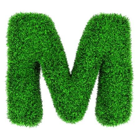 흰색 배경에 고립 된 잔디의했다 편지 M,.