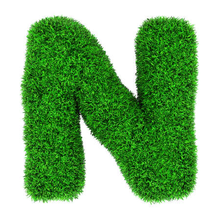 Letter N, made of grass isolated on white background. photo