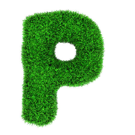 write a letter: Letter P, made of grass isolated on white background.